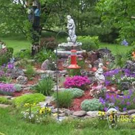 Уход за почвой и растения